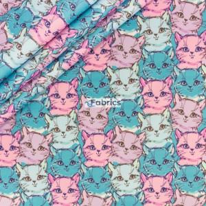 Koty różowo-niebieskie