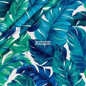 Zielone liście palmowe
