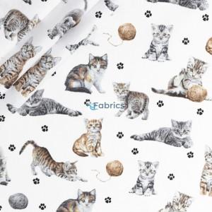 Kotki z włóczką na białym tle